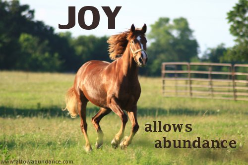 Joy Allows Abundance